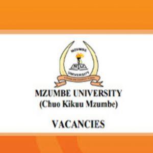 Ajira Mpya Mzumbe small