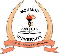 Mzumbe University small