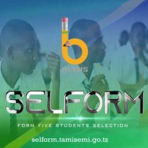 Selform System TAMISEMI small