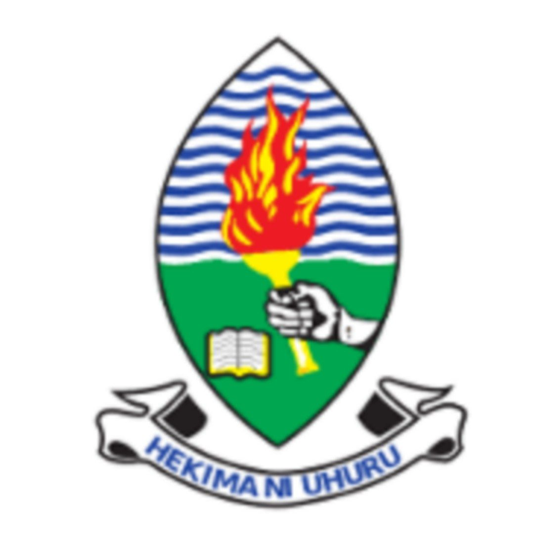 Assistant Accountant At UDSM,New 56 Jobs At University of Dar es Salaam (UDSM)