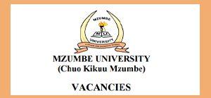 mzumbe jobs small