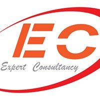 Expert Consultancy small