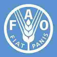 Food and Agriculture Organization FAO small