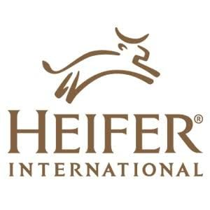 Heifer International small