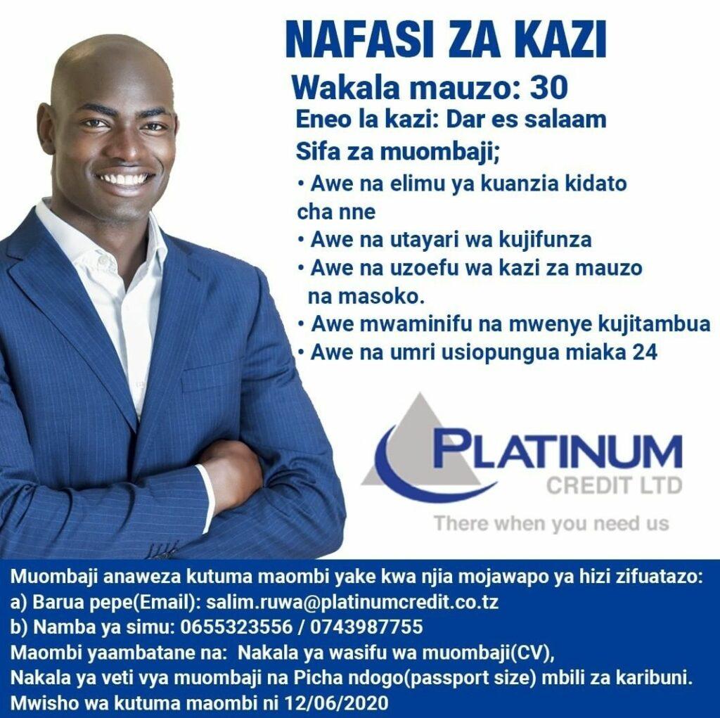 30 Job Vacancies At Platinum Credit Limited