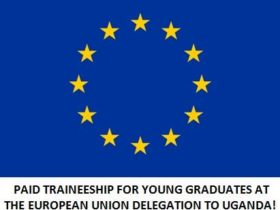 eu delegation to uganda traineeship 2019
