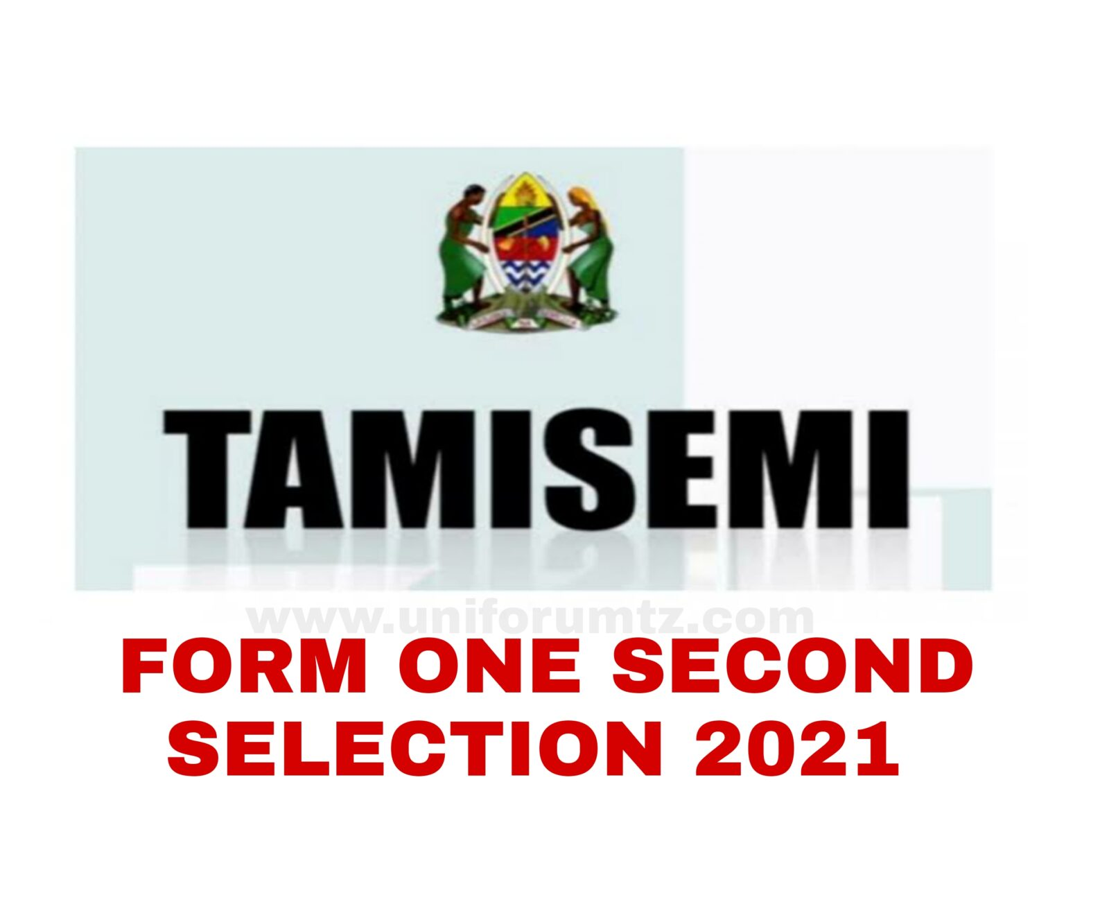 Form One Second Selection 2021 Tanzania