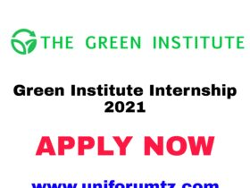 Green Institute Internship 2021