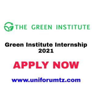 Green Institute Internship 2021