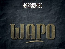 Harmonize Wapo MP3 Download (Official Audio),