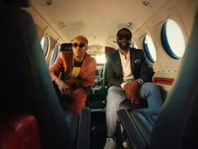 Alikiba Ft Dj Sbu Nakupenda Video