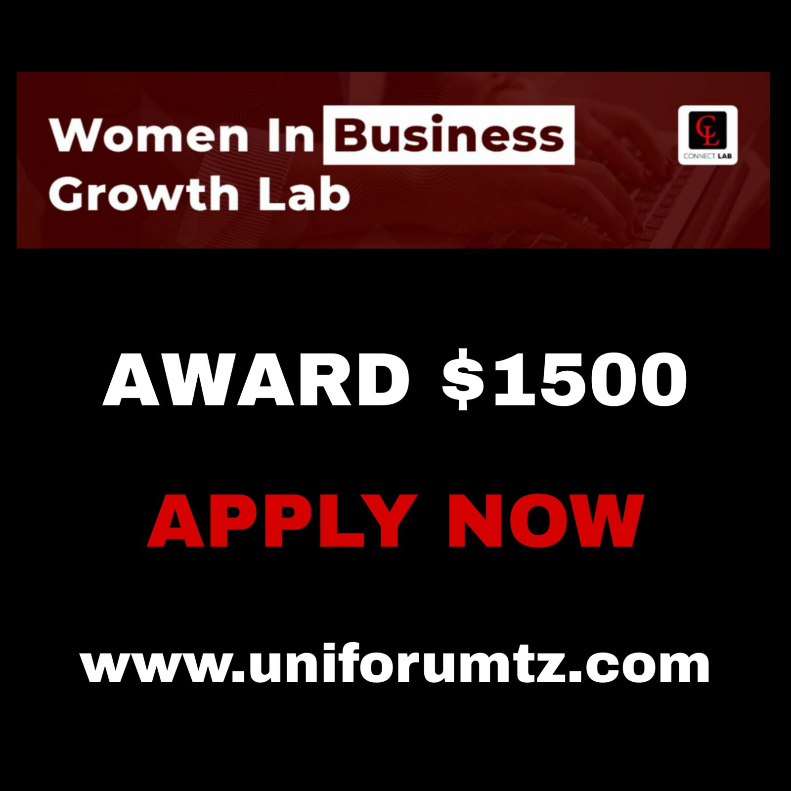 The Women in Business Growth Lab