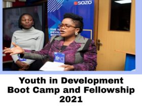 The Youth in Development Boot Camp and Fellowship 2021