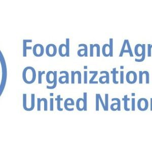 FAO/Government of Switzerland 2021 International Innovation Award for Sustainable Food and Agriculture (USD 60,000 prize)