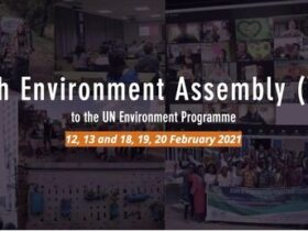 UN Environment Programme (UNEP) Youth Environment Assembly (YEA) 2021