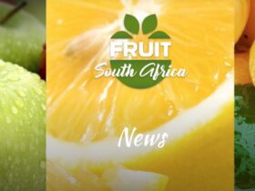 Fruit South Africa Internship Opportunity 2021
