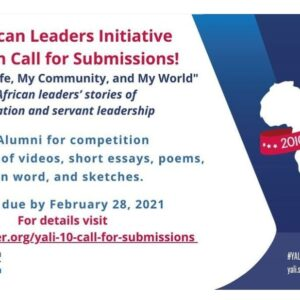 Young African Leaders Initiative (YALI) Competition 2021 Call For Submission
