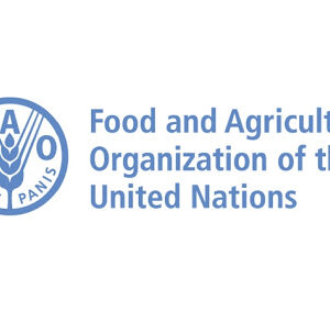UN FAO Fellows Programme 2021