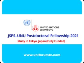 UNU Postdoctoral Fellowships Programme 2021