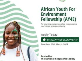 African Youth for Environment (AY4E) Fellowship 2021