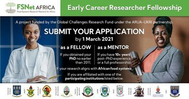 FSNet-Africa Early Career Researcher Fellowship 2021