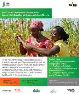 IITA/IFAD Agrihub Nigeria Project 2021