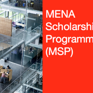 Nuffic MENA Scholarship Programme 2021/2022 To Study In Netherland