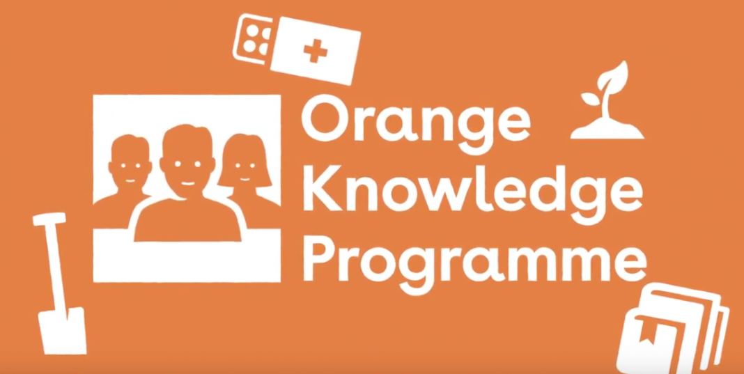 Nuffic Orange Knowledge Programme (OKP) 2021/2022 To Study Netherland
