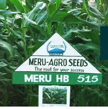 32 Job Opportunities At M/S Meru Agro-Tours & Consultants Co. Ltd (MATCC)