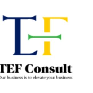 9 Job Opportunities At TEF Consult Limited