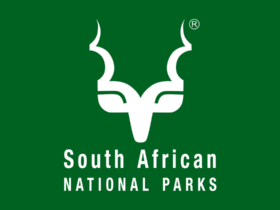 SANParks Internships Opportunities in Cape Town
