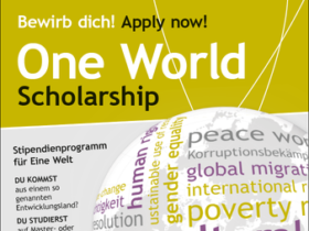 AAI One World Scholarship Program 2021 For Developing Countries